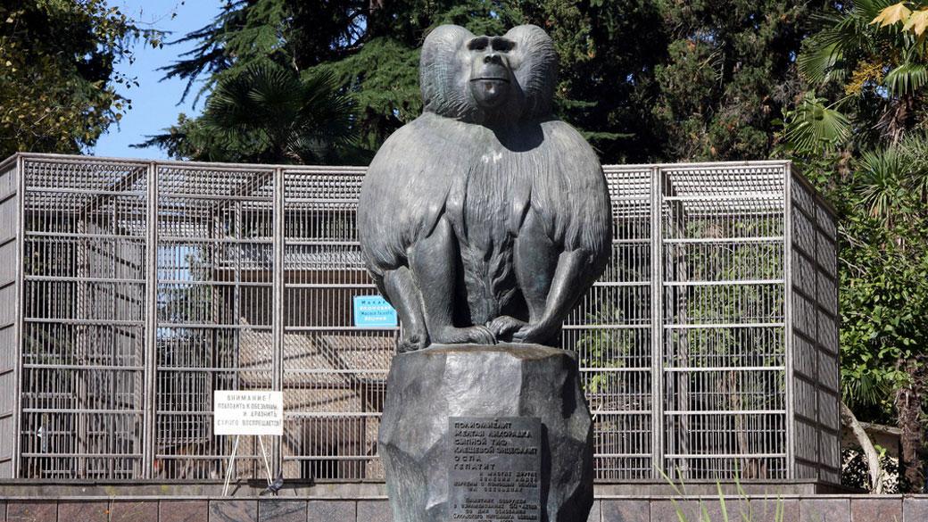 памятник обезьяне в сухуми