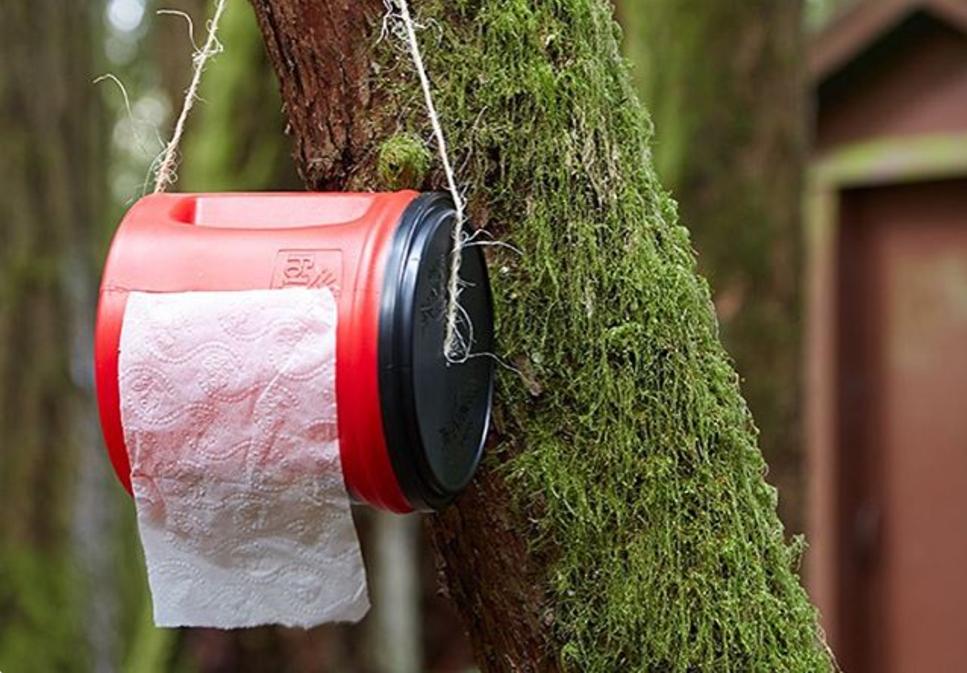 туалетная бумага в лесу
