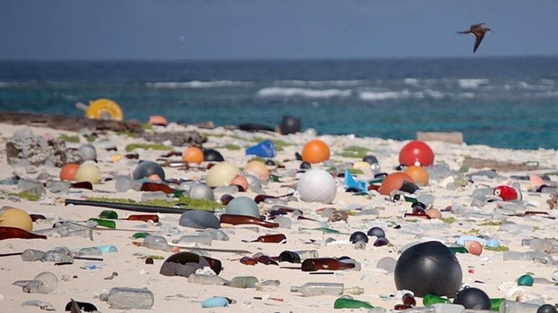 Пляж в индии 31