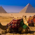 В феврале из России полетит первый самолет в Египет